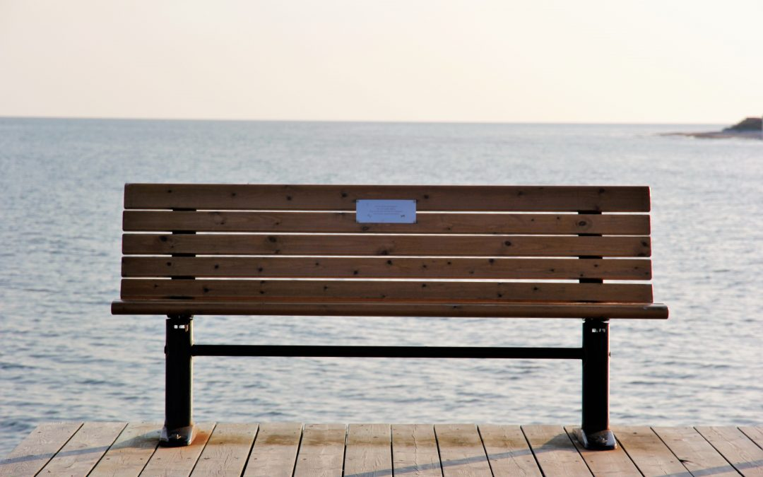 The Story of the Bench